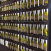 Visual Wine Shop - Modulo 96 - Led + Metacrilato